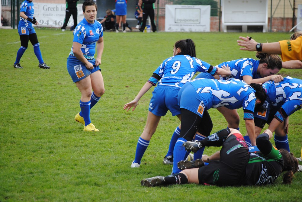 rugby articles